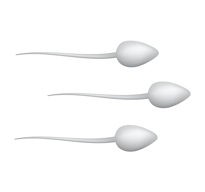 Male Factor Infertility: Semen Analysis